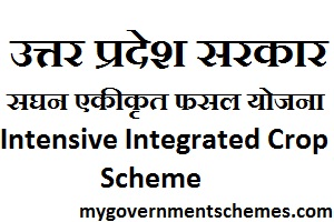 UP Intensive Integrated Crop Scheme