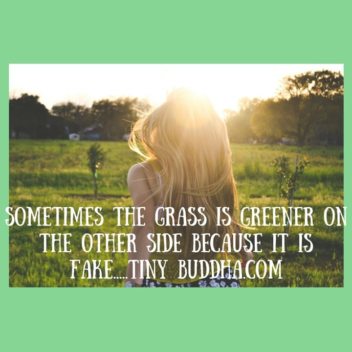 Sometimes the grass is greener on the other side because it is fake.....Tiny Buddha.com