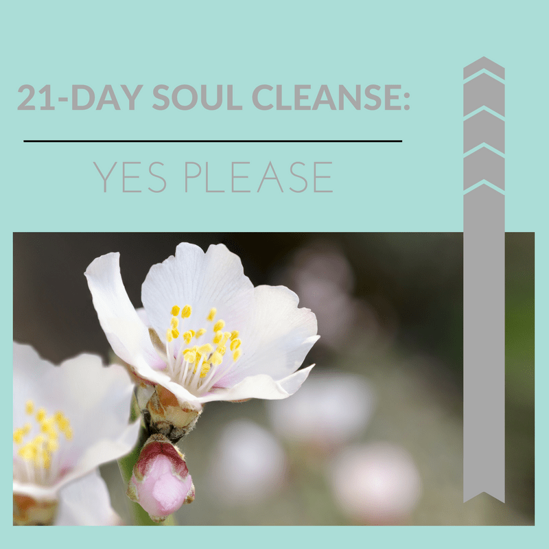 21-Day Soul Cleanse: Yes Please!