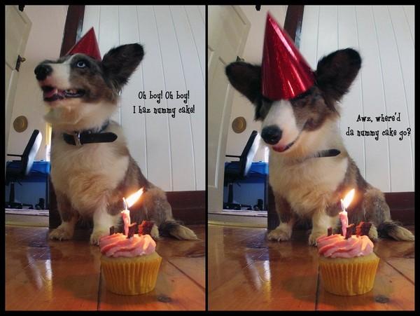 Birthday Thank You Meme