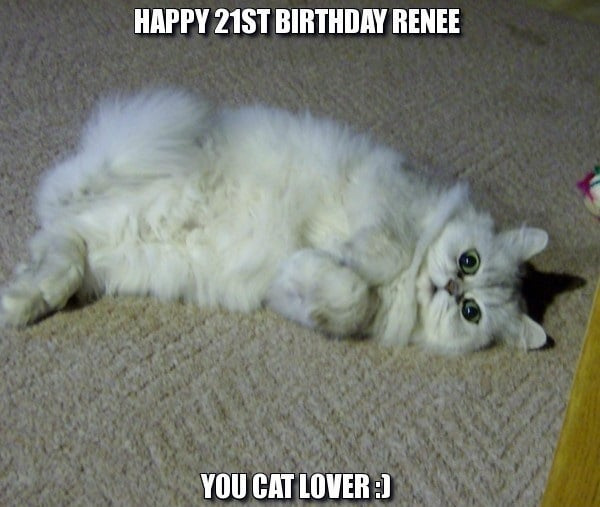 Facebook Birthday Meme Funny