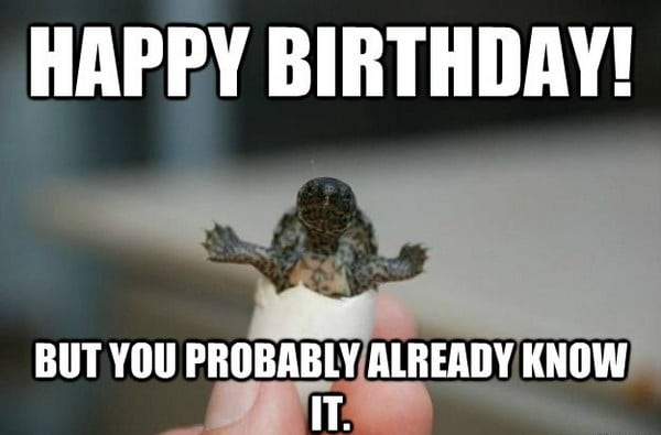 Funny Birthday Gif