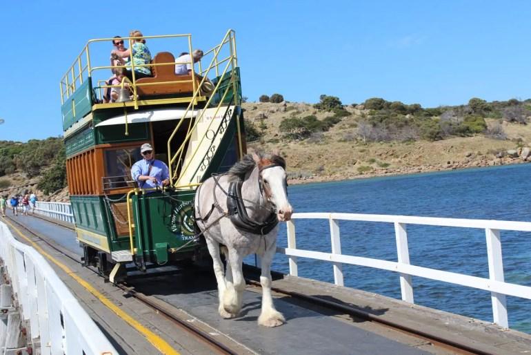 Die Attraktion in Victor Harbor: die von Pferden gezogene Straßenbahn