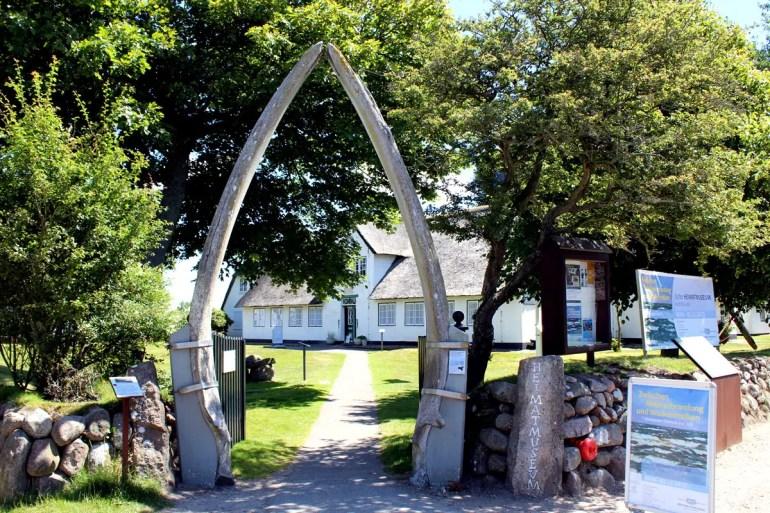 Zwei Walfischzähne markieren den Eingang des Sylter Heimatmuseums