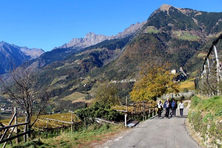 Auf den Wegen rund ums Dorf Tirol sind einige Wanderer unterwegs