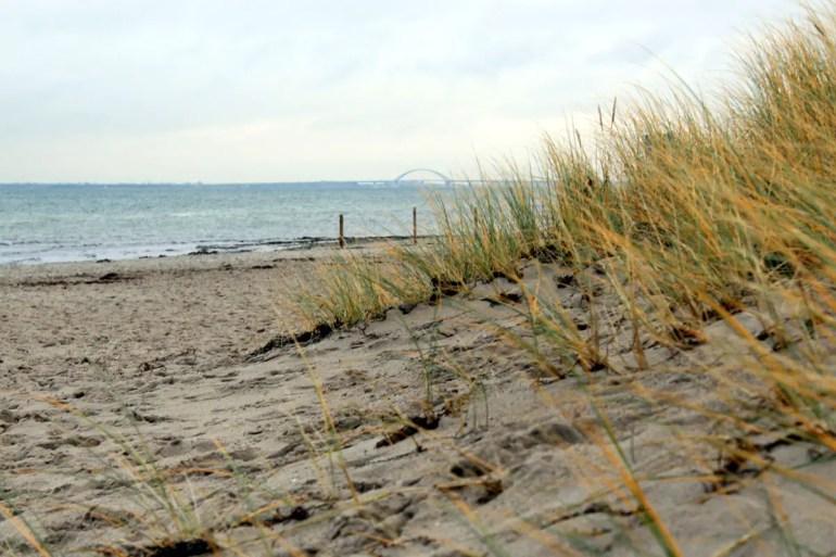Vom Strand aus kannst du bis nach Fehmarn schauen