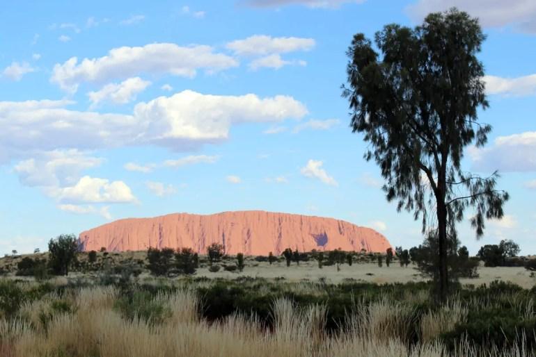 Fast wie eine Fata Morgana schimmert der Uluru am Horizont