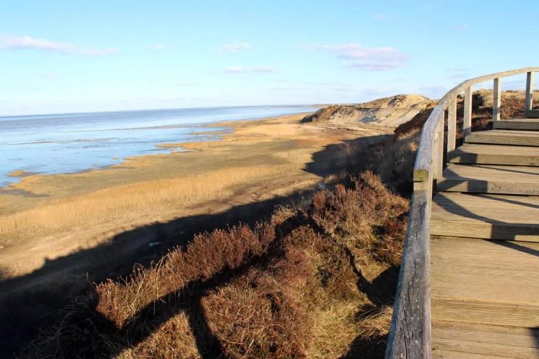 Einblicke in die Erdgeschichte gibt's am Morsum-Kliff
