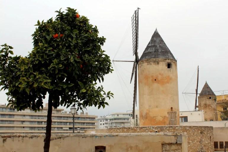 Die Windmühlen - eines von Mallorcas Wahrzeichen - fehlen auch in Palma nicht