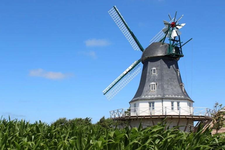 Die alten Mühlen sind ein Wahrzeichen von Föhr, die Borgsumer Mühle ist am besten erhalten