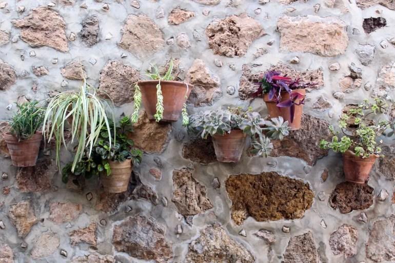 In Valldemossa zieren hübsche Mauergärten die Wände