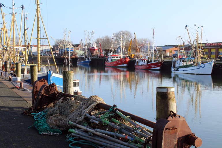 Im Winter liegen Büsums Krabbenkutter im Hafen
