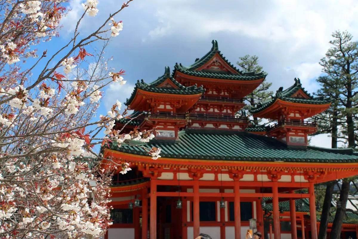 Kyoto ist berühmt für seine Tempel, die zur Kirschblüte besonders schön aussehen