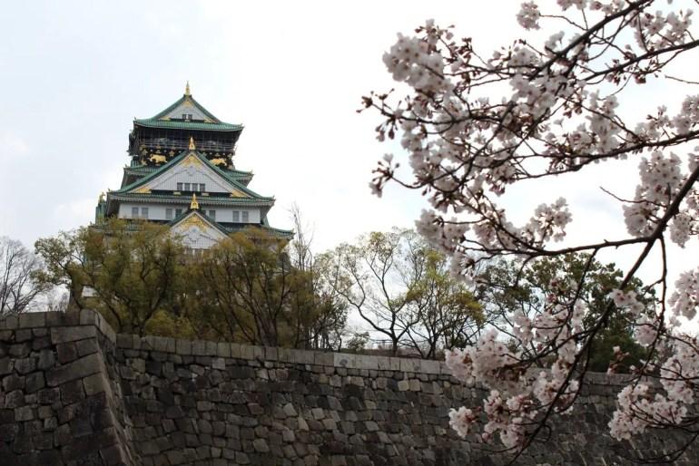 Im Park rund um die Burg Osaka findest du in Osaka zahlreiche Kirschbäume