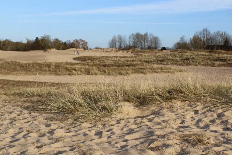 Die Boberger Dünen zählen zu den beliebtesten Ausflugszielen in Hamburg