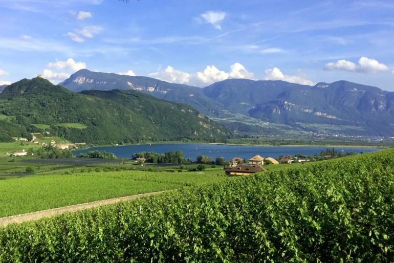 Der Kalterer See ist umgeben von Weinbergern und lädt zum Baden ein