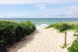 Einfach traumhaft: die langen Ostseestrände in Mecklenburg-Vorpommern