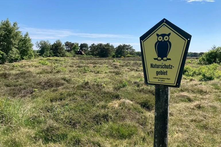 Die Dünenheide südlich von Vitte ist ein Naturschutzgebiet