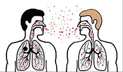 Cara TB merebak