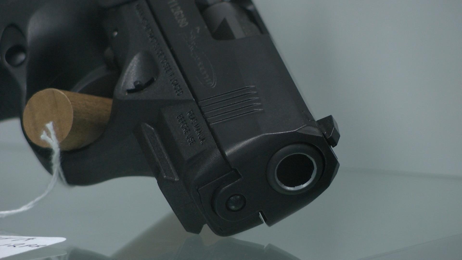 gun pic_1451954191048-54787063.jpg
