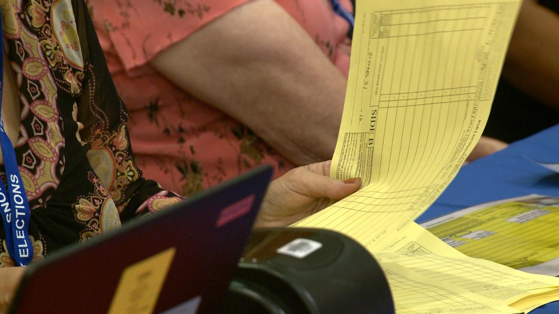 elections voter rolls 1_1553558810165.jpg.jpg