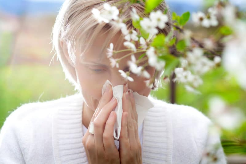 Two All-Natural Ways To Supplement Your Prescription Allergy Treatment