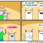 cat comic dog human