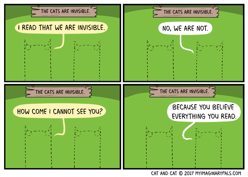 """Cat and Cat in """"Invisible"""""""