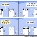 cat comic bruh cool