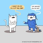 Cat comic sleep