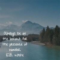 E.B. White: On Wonder