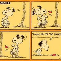 Snoopy: Thank You for the Dance