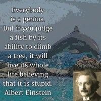 The Quotable Albert Einstein: Everybody Is a Genius