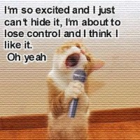 Funny Cat: I'm So Excited and I Just Can't Hide It