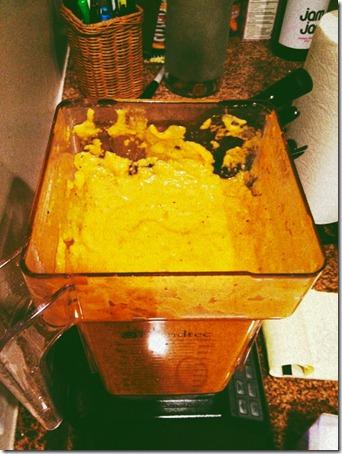 butternut squash sauce 004