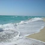 A New Reason to Love Miami