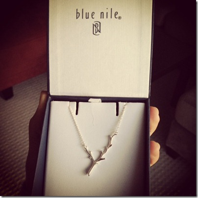 blue nile 1
