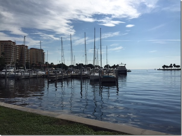 St. Pete by the water