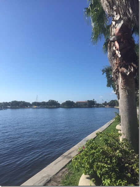 St. Pete run