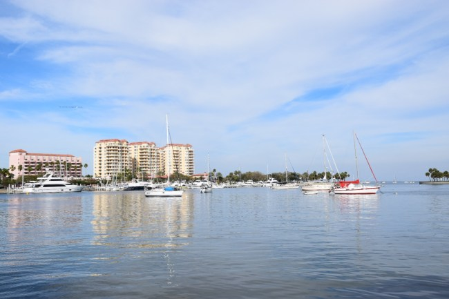 St. Petersburg Florida - Landscape view of water