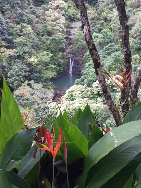 Road to Hana - Maui