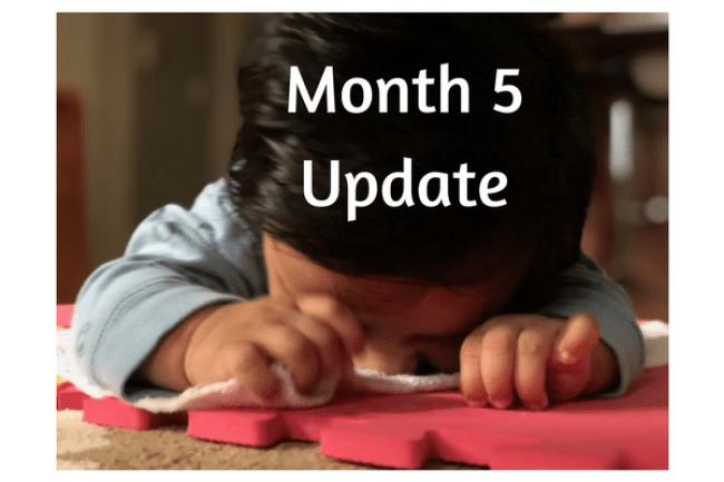 Month 5 Update