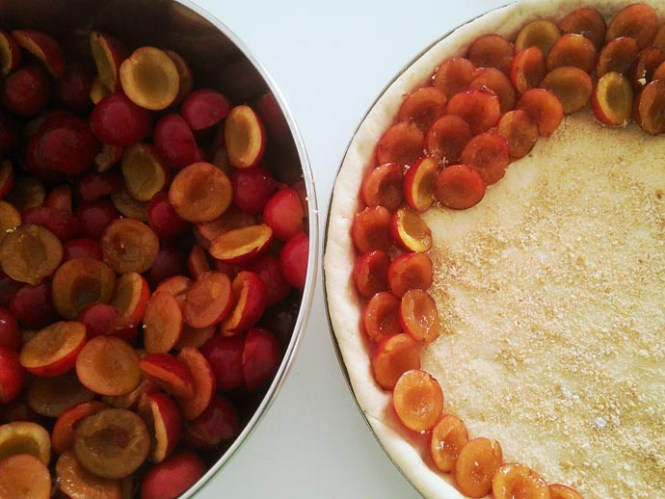 vlaai fruit