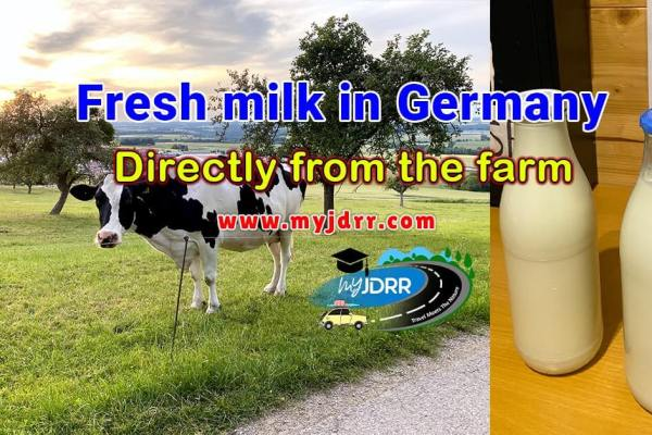 Fresh milk in Germany - Directly from the farm