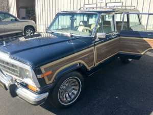 Jeep+Grand+Wagoneer+my+jeep+and+me+,com__IMG_1716_98