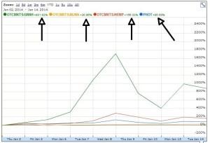 Growth of Marijuana Stocks