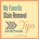 My Favorite Stain Removal Tips