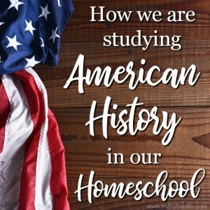 How We Are Studying American History in Our Homeschool