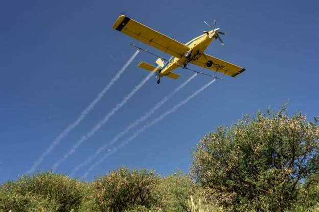 Ethiopia intensifies fight against locust swarms - MyJoyOnline.com