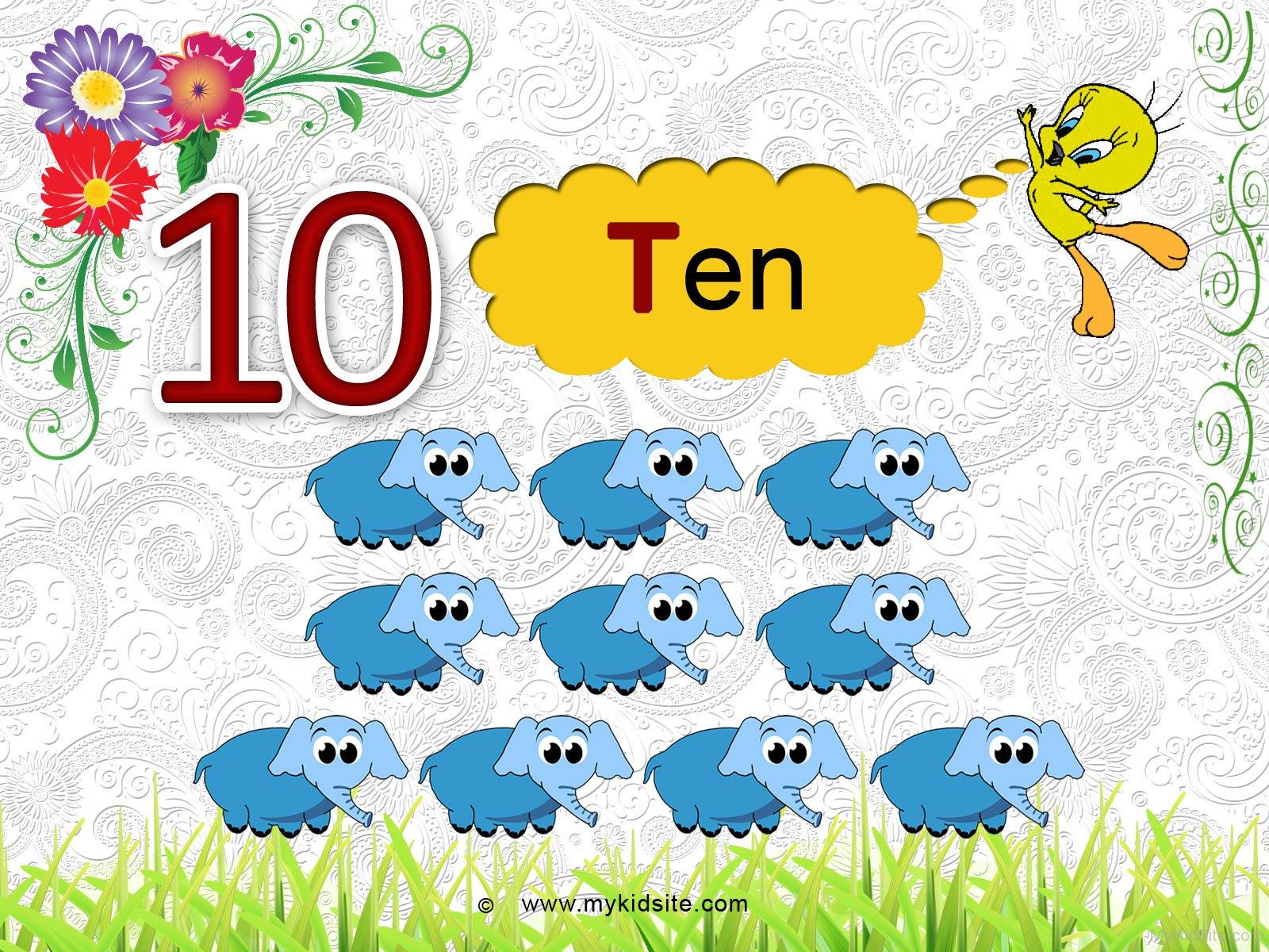 Number Worksheet For 10
